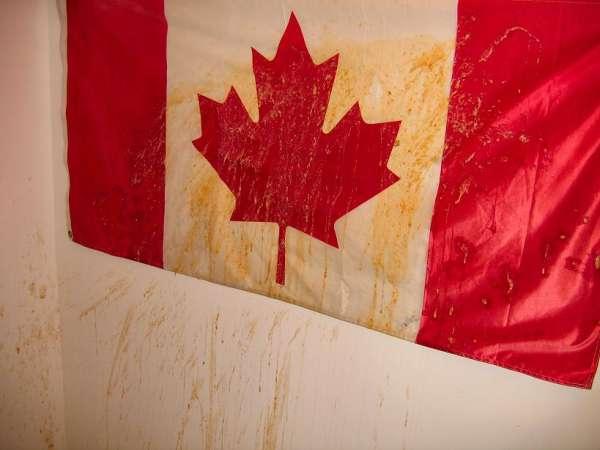great canadian puke! vomit