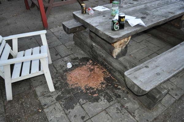 Raw and vodka vomit