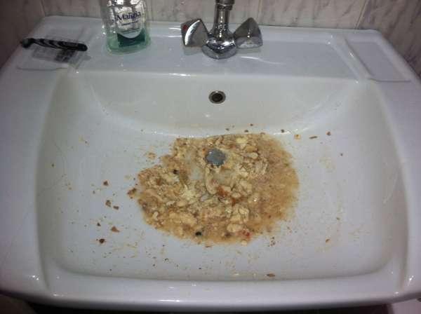 Chunk E Cheese Vomit Rate My Vomit Vomit Pictures