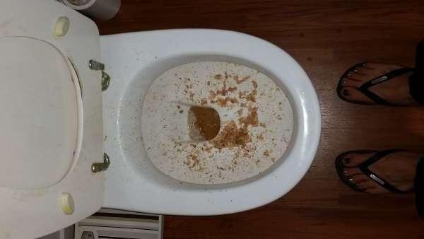 Toilet Puke vomit