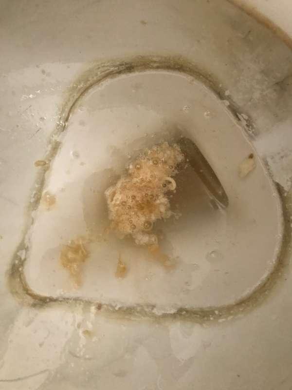 Ramen public restroom vomit vomit