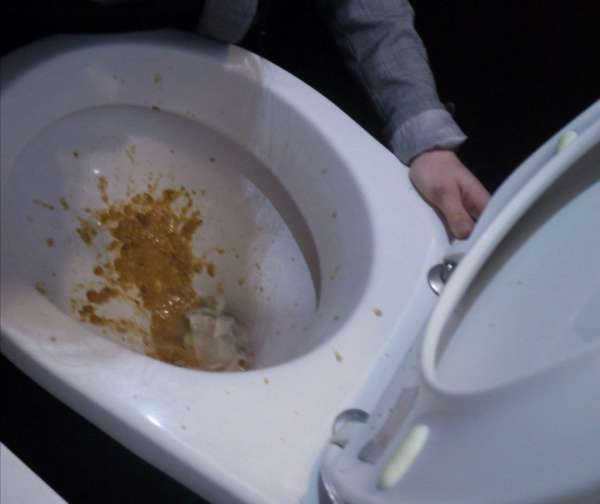vegan vomit in a bar's toilet vomit