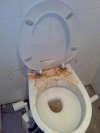 perfect aim vomit