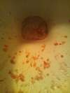 girls toilet 2 vomit