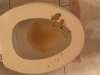 Fake vomit exposure vomit