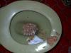 toiletpuke vomit