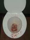 Cooge Bay Hotel vomit