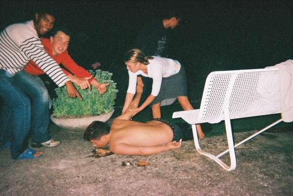 carots vomit