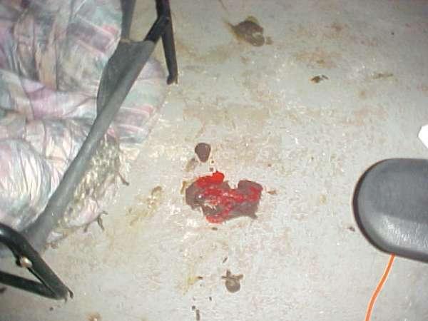 mmm Cake and cherries vomit