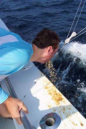 Hungover Deep Sea Fishing Vomit Rate My Vomit Vomit