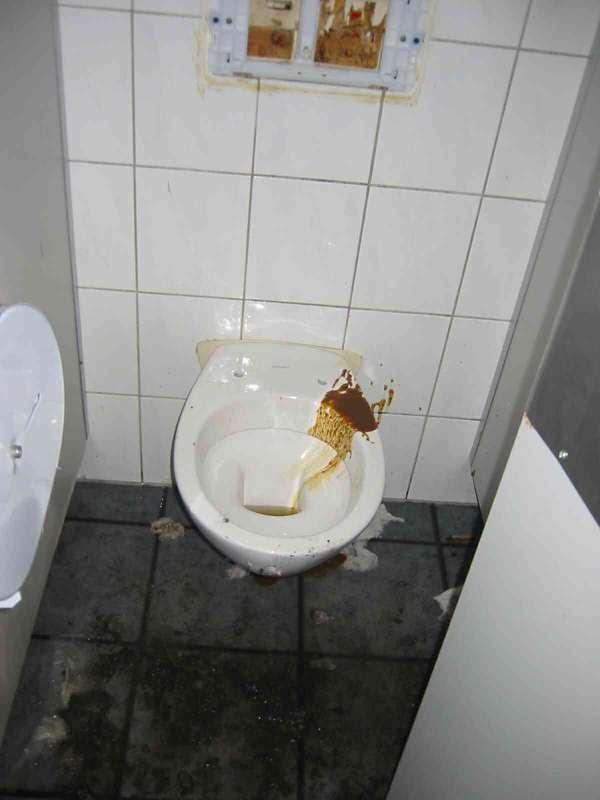 Disco Toilet vomit