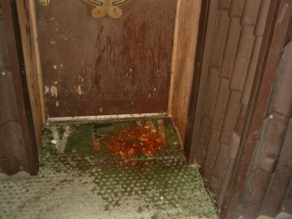 Habanero Chug vomit